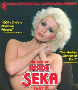 Inside Seka Part poster