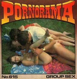Pornorama 615 Group Sex small poster