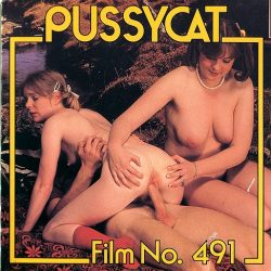 Pussycat Film Incest Intermezzo