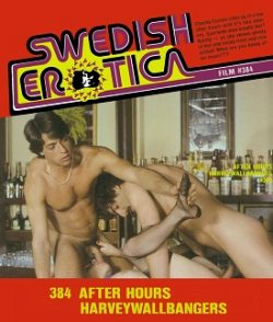 Swedish Erotica After Hours Harveywallbangers small poster