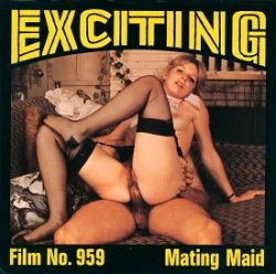 Exciting Film Mating Maid small poster
