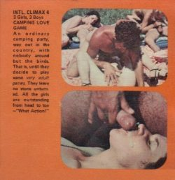 International Climax 4 Camping Love Game