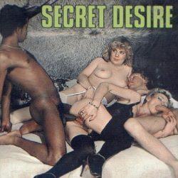 Diplomat Film Secret Desire