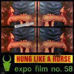 Expo Film Hung Like A Horse