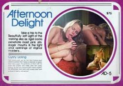 Afternoon Delight 5 Cunny Lickin poster
