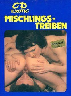 CD Film 304 Mischlings Treiben 1