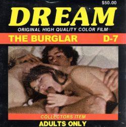 Dream 7 The Burglar poster