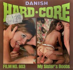 Danish Hardcore Film 603 My Sisters Boobs poster