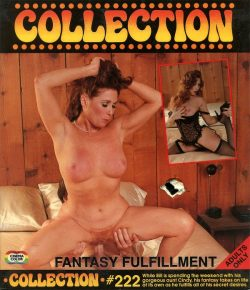 Collection Film 222 Fantasy Fulfillment poster