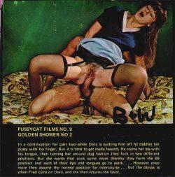 Pussycat Films 9 The Shower Part 2 poster