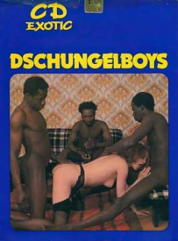 CD Film 301 Dschungelboys small poster