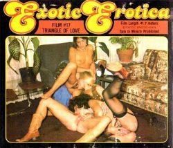 Exotic Erotica Film 17 Triangle Of Love poster