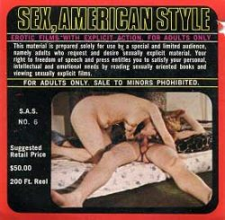 Sex American Style 6 Fireside Funzies poster