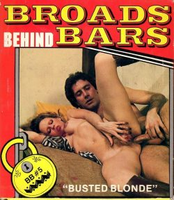 Broads Behind Bars 5 Busted Blonde poster