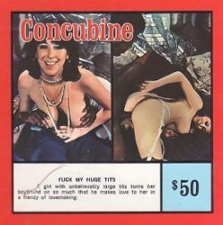 Concubine 3 Fuck My Huge Tits small poster