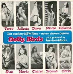 Dolly Birds Of Britain Sue small poster