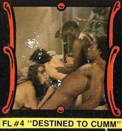 Fling 4 Destined To Cumm poster