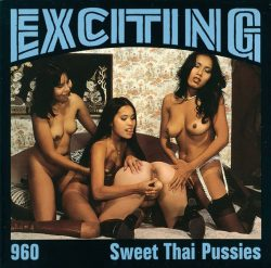 Exciting Film Sweet Thai Pussies poster