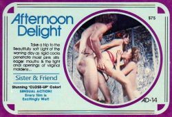 Afternoon Delight 14 Sister And Friend poster