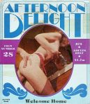 Afternoon Delight 28 Welcome Home poster