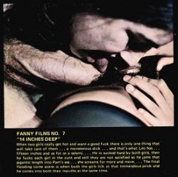 Fanny Films 7 14 Inches Deep small poster