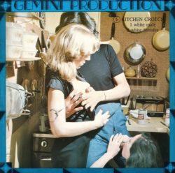 Gemini 5 Kitchen Crotch poster