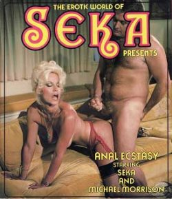 The Erotic World Of Seka 501 Anal Ecstasy small poster