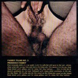 Fanny Films 3 Prodded Fanny poster
