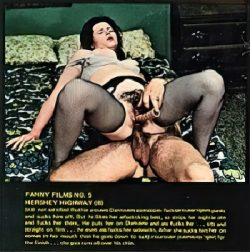 Fanny Films 5 Hershey Highway Fire My Rear poster
