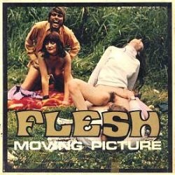 Flesh Moving Picture 78 Hot Summer poster