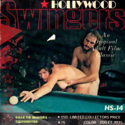 Hollywood Swingers 14 The Hustler poster
