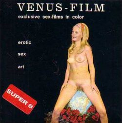 Venus Film V4 The Negro And The Maid poster