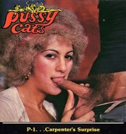Pussy Cats 1 Carpenters Surprise small poster