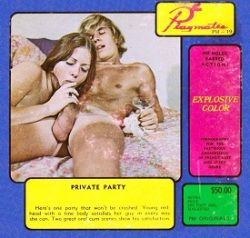 Playmate Film 19 Private Party small poster