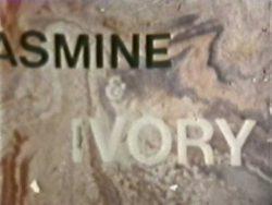 Diverse Industries Jasmine Ivory poster