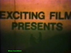 Exciting Film 909 Surprise Party poster